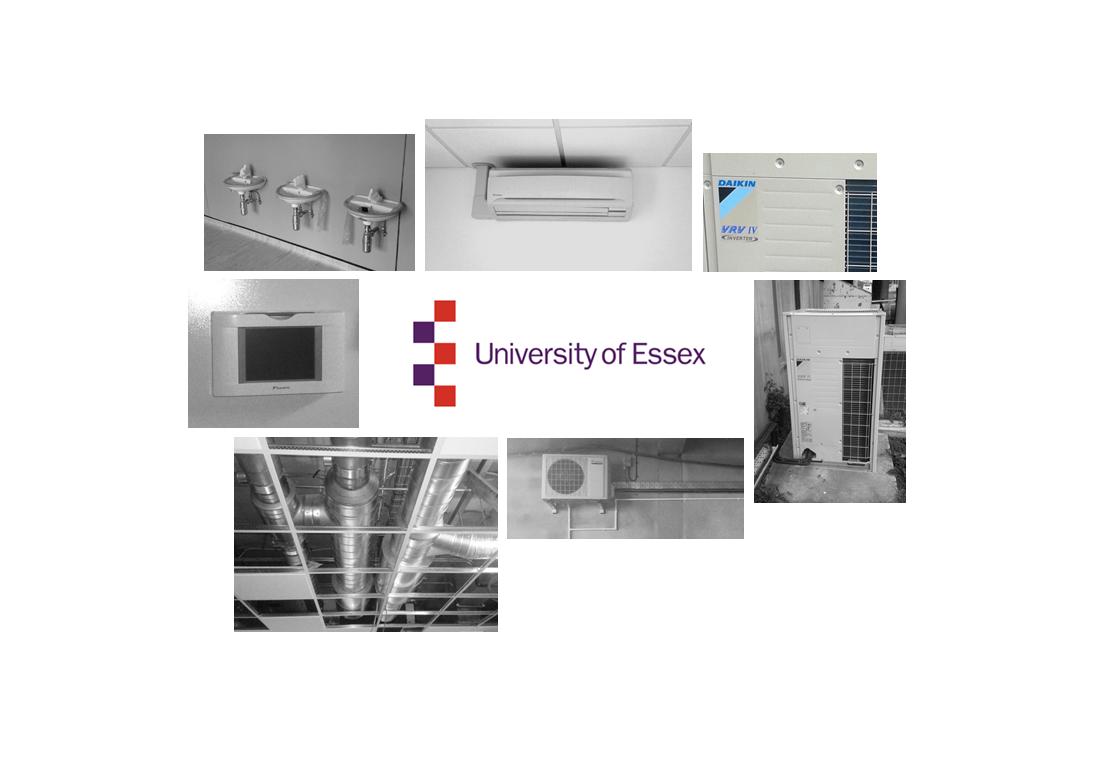 University of Essex, Colchester